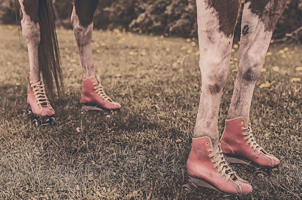 "Horse wearing lace-up boots on each foot representing that ""quality"" means different things to different people."